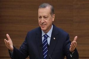 Cumhurbaşkanı Erdoğan: Sıkıntı görürsem müdahale ederim!
