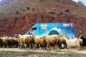 'Seçim Turu' TRT1'de başlıyor!