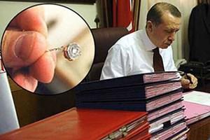 Erdoğan'dan sürpriz böcek hamlesi!