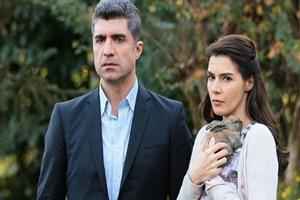 Star'ın reytingi bol dizisi Erdoğan'ın yayınına takıldı