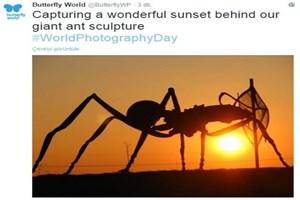 Twitter, Dünya Fotoğrafçılık Günü'nü 'o an'larla kutluyor