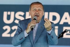Economist'ten Erdoğan'ın seçim kararı yorumu: Kumarbaz