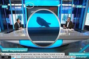 TRT'ye 'talih kuşu' kondu!
