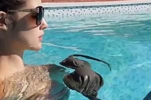 Amanda Cerny havuzda bikini şov yaptı,sosyal medya sallandı!