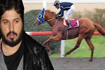 Reza Zarrab'ın atı da devlete kaldı! Aylık masrafı dudak uçuklatıyor!
