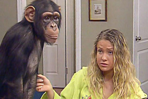 90'lı yıllara damga vuran maymun Çarli şimdi nerede?