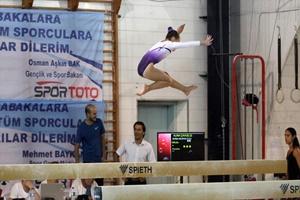 Artistik Cimnastik Federasyon Kupası