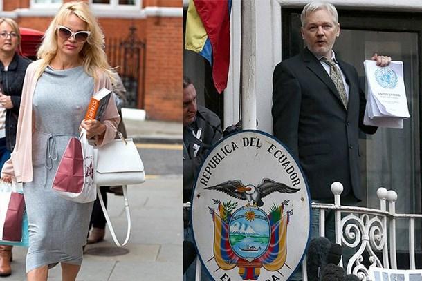 Pamela Anderson'dan Assange bombası!